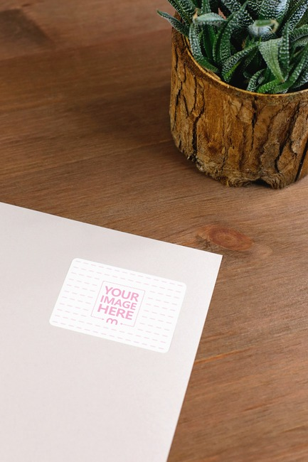 Paper Envelope with Potted Plant Mockup